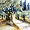 Olivenbaum, Aquarell