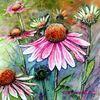 Blüte, Blumen, Aquarell, Aquarelle blumen