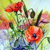 Blumen, Mohn, Aquarell, Aquarelle blumen