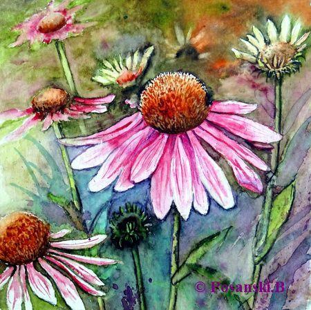 Blüte, Blumen, Aquarell, Aquarelle blumen, Sonnenhut