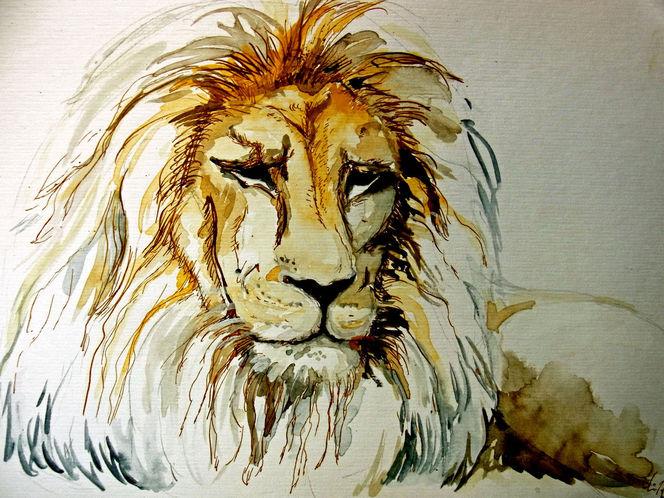 Löwe, Skizze, Zeichnungen