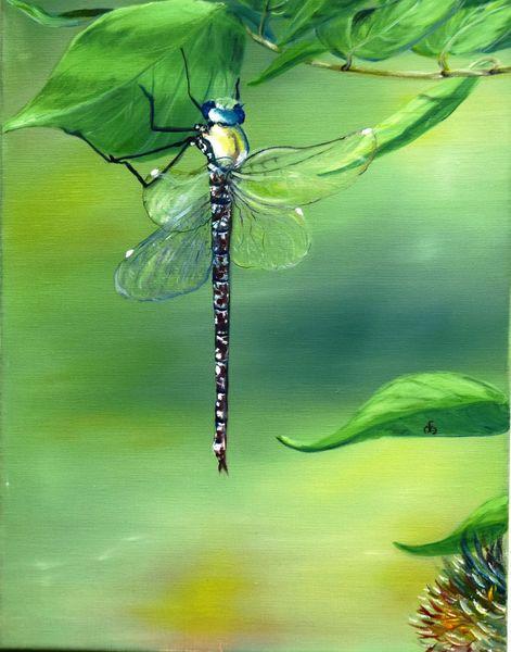 Jahreszeiten, Strauch, Flügel, Insekten, Tiere, Pflanzen