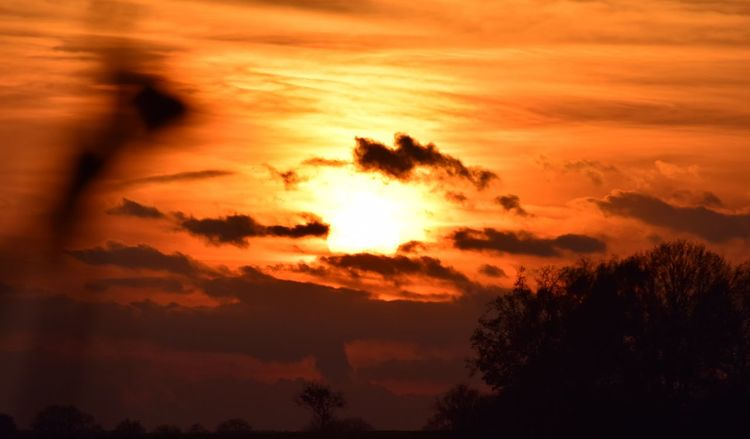 Herbstfarben, Himmel, Abend, Brandenburg, Fotografie, Leuchten
