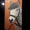 Pferde, Tiere, Fuchsschwanz, Hausnummer