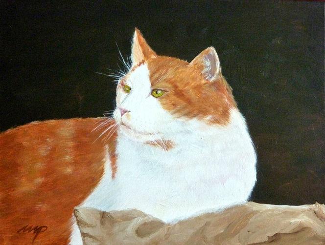 Kater, Tiere, Haustier, Katze, Malerei