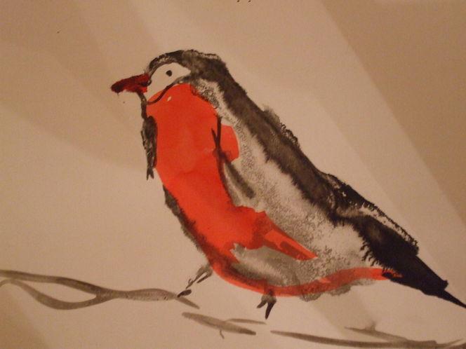 Vogel, Zeichnungen