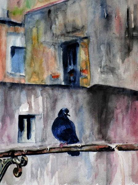 Unfreundlich, Vogel, Aquarellmalerei, Haus, Dunkel, Alt