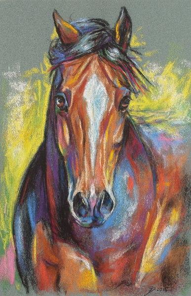 Tierportrait, Pferde, Pastellmalerei, Zeichnungen, Tiere