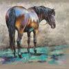 Pferde, Smaragd, Pony, Bunt
