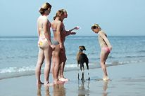 Meer, Hund, Girls, Surreal