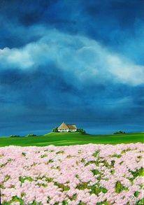 Rosa, Wolken, Haus, Himmel