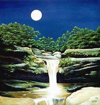 Wasser, Baum, Stein, Wasserfall