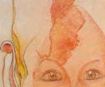 Ausstellung, Eierköpfe, Gemälde, Pinnwand