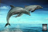 Tierwelt, Tiere, Meer, Lächeln