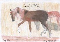 Zeichnung, Hengst, Araber, Pferde