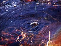 Fotografie, Co2, Wasser, See