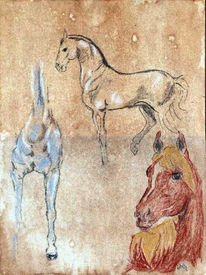 Grafit, Zeichnung, Pferde, Kreide