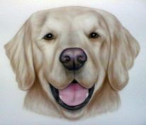 Airbrush, Figural, Hund, Tiere