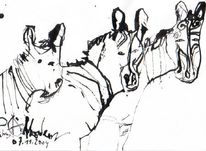 Zebrastreifen, Akkordeon, Petrus, Tiere