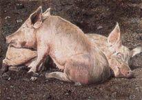 Tiermalerei, Portrait, Tiere, Schwein