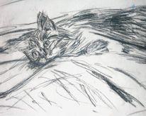 Intimität, Zeichnung, Katze, Skizze