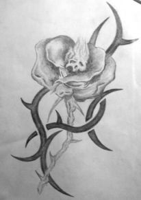 Zeichnung, Rose, Zeichnungen, Pflanzen