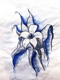 Blumen, Aquarellmalerei, Grafik, Lilie