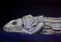 Zeichnung, Zeichnungen, Reptil