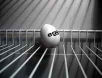 Kühlschrank, Fotografie, Surreal, Ei