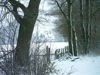 Landschaft, Fotografie, Winter