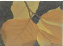 Zeichnung, Zeichnungen, Herbstlaub