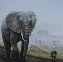 Mann, Elefant, Grün, Feld