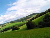 Wiese, Landschaft, Fliegen, Fotografie
