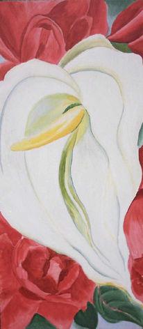 Blüte, Anturie, Natur, Malerei