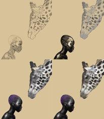 Giraffe, Afrika, Naturvolk, Sonne