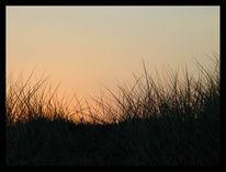 Dünen, Fotografie, Reiseimpressionen, Sonnenaufgang