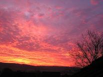 Morgenrot, Landschaft, Baum, Schatten