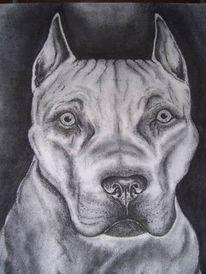 Portrait, Zeichnung, Zeichnungen