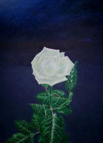 Malerei, Stillleben, Blumen, Rose