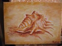 Malerei, Muschel
