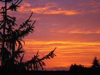Sonnenuntergang, Fotografie, Himmel, Abendrot