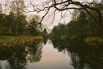 Herbst, Fotografie, Landschaft, Ruhe