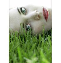 Wiese, Augen, Portrait, Fotografie