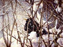 Vogel, Winter, Amsel, Malerei