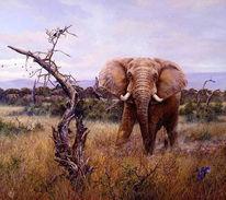 Elefant, Kenia, Afrika, Malerei