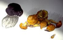 Pilze, Zeichnungen, Stillleben, Steinpilz