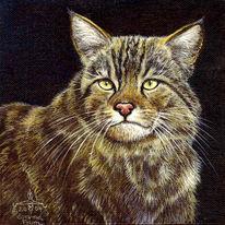 Katze, Wildkatze, Malerei, Figural