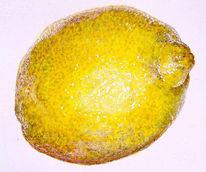 Zitrone, Früchte, Malerei