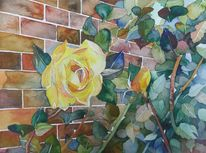 Blüte, Bunt, Blumen, Mauer