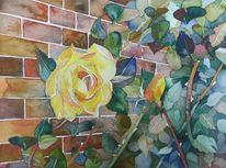 Bunt, Mauer, Blüte, Rose
